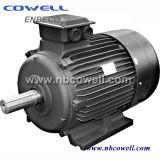 Alto motor de la C.C. del motor servo de la C.C. de la alta precisión de la torque