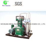Kapazität Gz Typ Wasserstoff-Gas-Kompressor des Datenträger-6nm3h
