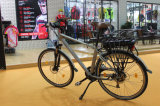 Bicicleta eléctrica aprobada del motor de la bici 36V350W del CE nueva