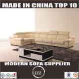 بسيطة يصمّم قطاعيّة جلد أريكة [لز1332ب]