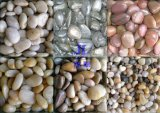 Blanco Guijarro, Tumbled Pebble, hecho a máquina Pebble, Río Piedra, Snow White Pebble