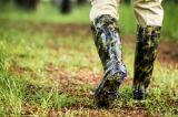 De mijn Laarzen van de Regen van de Bedrijfsveiligheid, het Werk Rainshoes