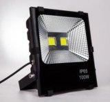 30W IP65 impermeabilizzano l'indicatore luminoso di inondazione di vendita caldo della PANNOCCHIA