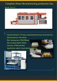 Máquina plástica de Thermoforming de la bandeja del huevo con el sistema servo del programa piloto