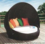 Салон фаэтона, Lounger, стул салона, мебель отдыха, стул пляжа 5061