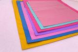 Sacchetto di indumento di plastica leggero di colore con la guarnizione adesiva