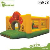 Il campo da giuoco interno gioca i capretti, trampolino dell'acqua del campo da giuoco dell'interno dei capretti mini gonfiabile