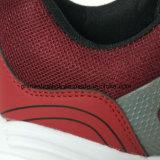 De Tennisschoenen die van de Kleurrijke Vrouwen van de manier Atletische Schoenen in werking stellen
