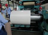 Fornitore d'acciaio della bobina ricoperto colore