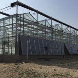 Дом Multi пяди высокого качества горячая продавая стеклянная зеленая
