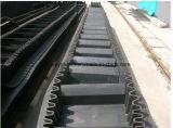 Transporte resistente carbonoso Belt/Ep100--Ep600