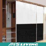 Fabrik-preiswerter Garderoben-Wandschrank-Großhandelsschrank (AIS-W035)