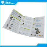 Folheto Tri-Folded Full Color Flyer Printing