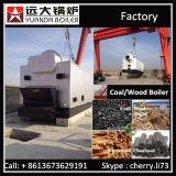 Carvão da alta qualidade da entrega de China/caldeira rápidos 1t 2t 4t 6t 8t 10t da biomassa