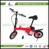 E-Bici del modelo nuevo de la venta directa de la fábrica del fabricante de China