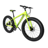 Bicycle Factory Shimano Tourney 21-Speed ​​Alliage d'aluminium Fat Tire Mountain Bike