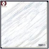 O mármore composto da qualidade do AAA da classe telha a sala de visitas (R6062)