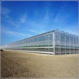 Vidrio de flotador ultra claro templado para la construcción comercial del invernadero