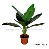 가정 훈장 고품질 인공적인 Bonsai 나무