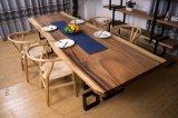 La Tabella pranzante di legno della noce solida ha impostato con la base del ferro (CG-020)