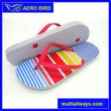 Тапочка ушивальника нашивки способа Aero тапочек птицы Unisex