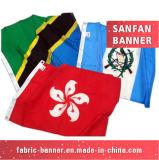 Materiale delle bandierine & delle bandiere del vinile e tipo stampato bandiera d'attaccatura del tessuto