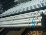 Alta qualidade Galvanized Steel Pipe e Welded Steel Pipe para Scaffolding/Greenhouse Used Galvanized Pipe