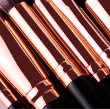 Professionista 15 parti della Rosa di trucco dell'insieme di spazzola dorato elegante