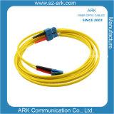 Memoria ottica di singolo modo 2 della fibra
