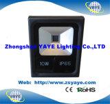 Yaye 18 Garten-Licht des heiße Verkauf PFEILER 10W LED Flut-Licht/PFEILER 10W LED Flutlicht-/10W LED mit Ce/RoHS