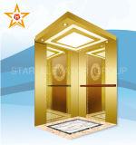 簡易性の販売のための様式によって使用される乗客のエレベーター