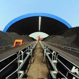 Da vertente seca do armazenamento de carvão do arco sistema de telhadura de aço do frame do espaço