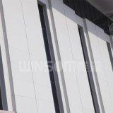 構築の装飾的で物質的なアルミニウム及び鋼鉄岩綿サンドイッチパネル