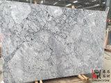 中国白のカラーラの壁のタイルまたはカウンタートップのためのプラハの国内灰色の大理石の平板
