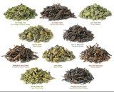 Maquinaria de envasado de la bolsita de té del té de Oolong