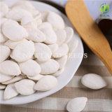 Graines de citrouille blanches de neige rôtie et Salted de collecte neuve de Heilongjiang