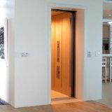 Elevador pequeno interno da casa de campo do standard alto de 2016 clássicos