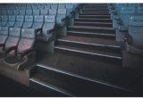 P/N4151 la Manche d'aluminium d'extrusion de profil de l'escalier DEL