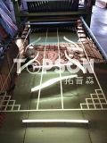 201 304 ont laminé à froid la feuille de couleur repérée par 8k d'acier inoxydable de miroir pour la décoration d'ascenseur