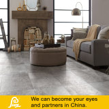 Luz da telha da porcelana do cimento - cor cinzenta 600X600mm (Caria Ceniza)