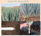 Plastik-Rooty organisches flüssiges Düngemittel