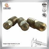 Commande numérique par ordinateur en bronze de Qingdao usinant pour les pièces de rechange