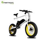 bici eléctrica del modelo de manera hecha por Aimos