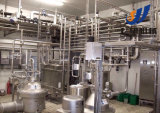 UHT pasteurisierte Joghurt-Milchproduktion-Zeile beenden