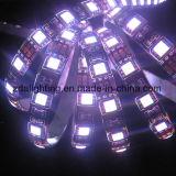 12V-24V 30LEDs/M SMD5050 scaldano l'indicatore luminoso di striscia flessibile bianco del LED