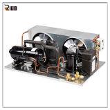 Congélateur de réfrigérateur profond avec l'élément se condensant de SANYO de compresseur horizontal de réfrigération de R404A