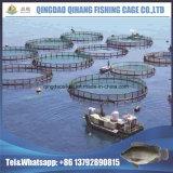HDPEのポンツーンは中国の熱い販売の普及したケージの栽培漁業を立方体にする