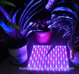 90W UFO 가벼운 LED는 플랜트 정원을%s 가볍게 증가한다