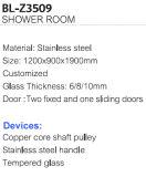 De gran tamaño con marco de acero inoxidable baño de ducha de esquina Habitación (BL-Z3509)