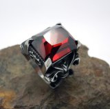 O Zircon encaixa a jóia inoxidável dos acessórios de forma da tendência dos anéis dos homens